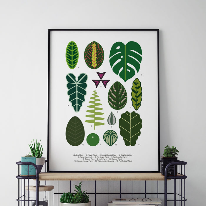 Houseplants leaves print