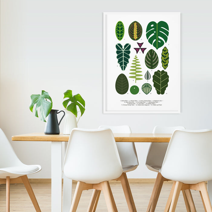 House plant leaf poster