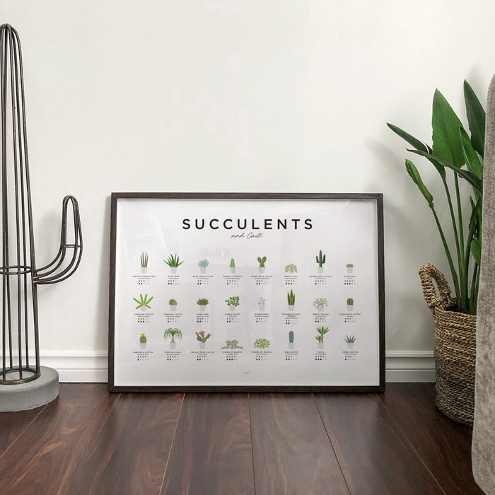 Succulents and Cacti Poster