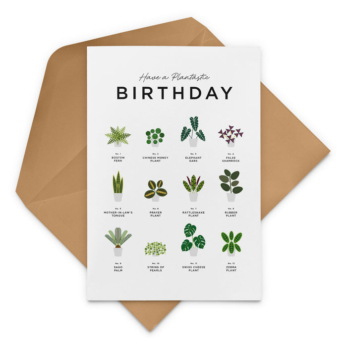 House Plants Birthday Card - Birthday card for a Plant Parent