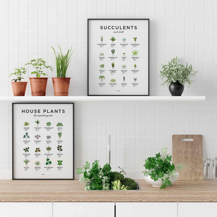 House plant illustration print