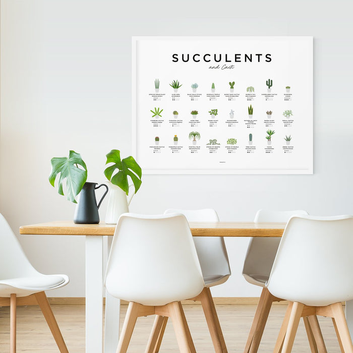 Succulents Plants Wall Art