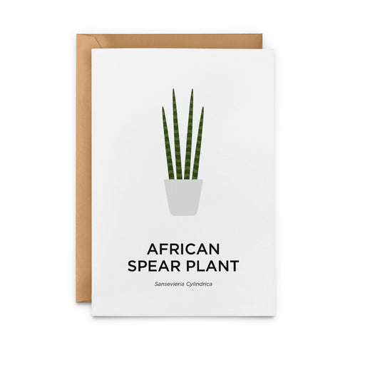 African Spear Plant Greeting Card