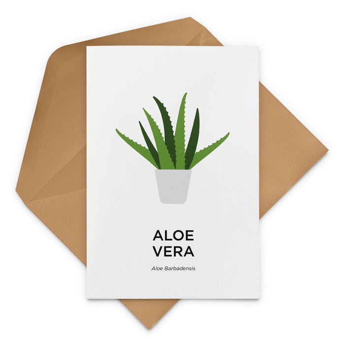 Aloe Vera Greeting Card