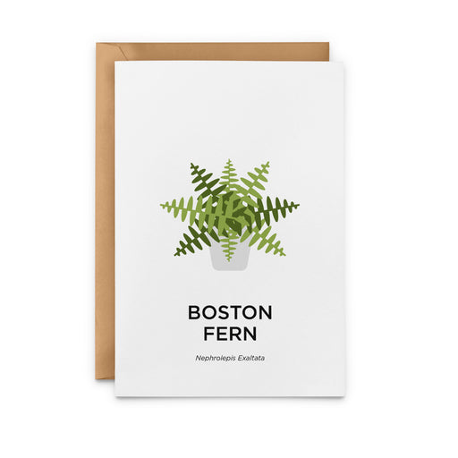 Boston Fern Greeting Card