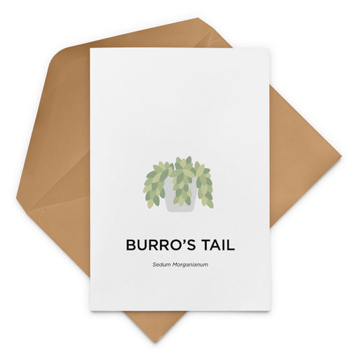 Burro's Tail Greeting Card
