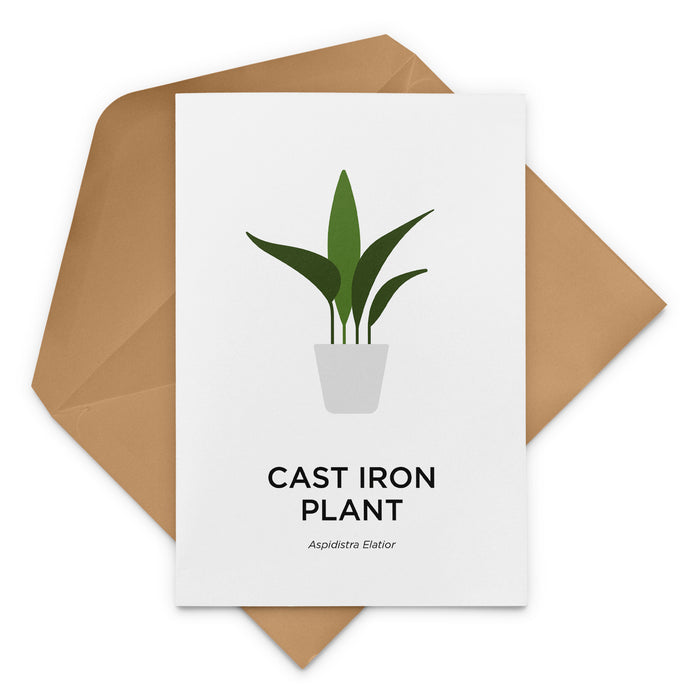 Cast Iron Plant Greeting Card