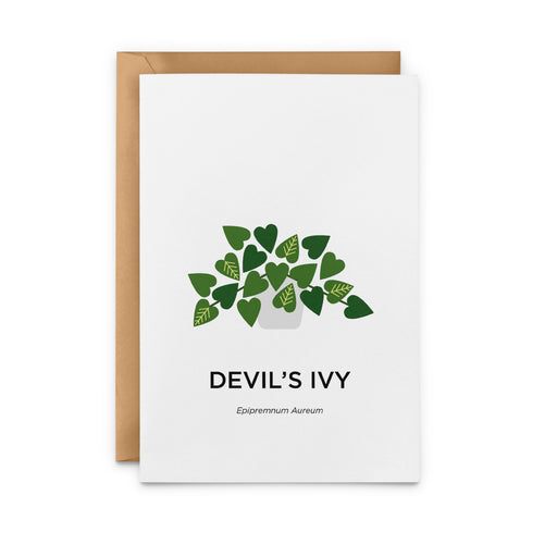 Devil's Ivy Greeting Card