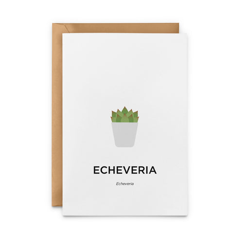 Echeveria Succulent Greeting Card