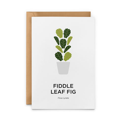 Fiddle Leaf Fig Greeting Card