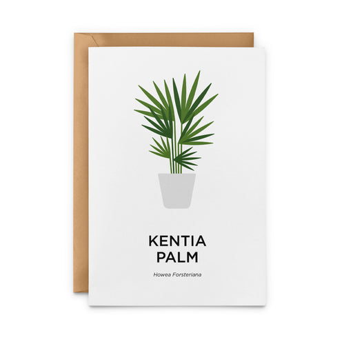 Kentia Palm Greeting Card