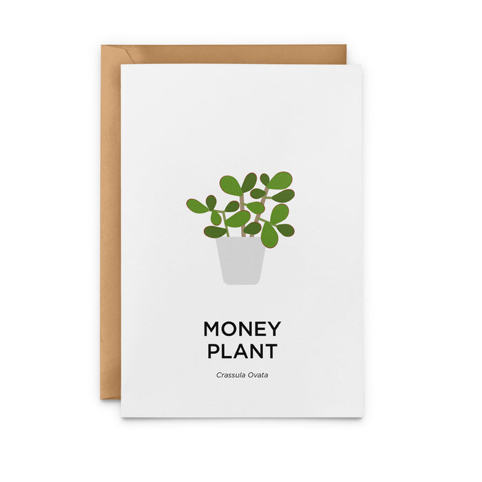 Money Plant Greeting Card