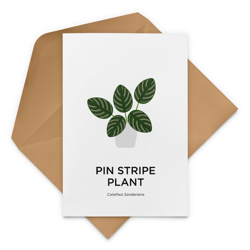 Pin Stripe Plant Greeting Card