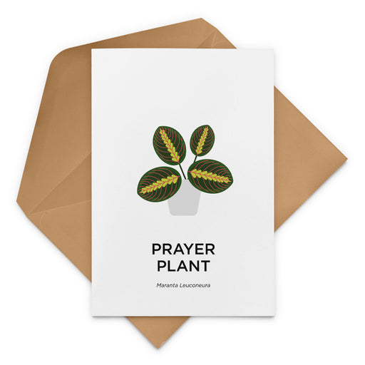 Prayer Plant Greeting Card