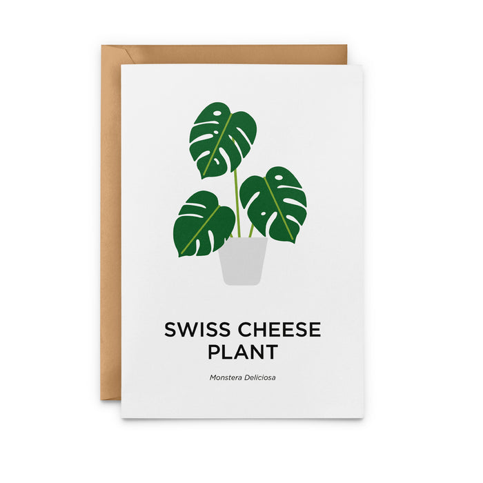 Swiss Cheese Plant Greeting Card