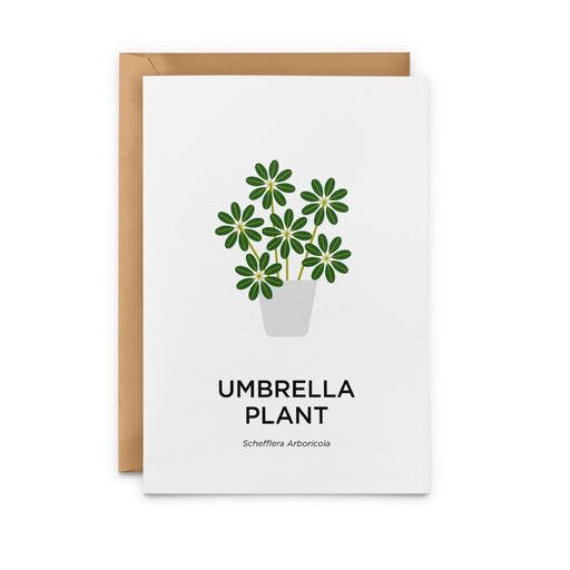 Umbrella Plant Greeting Card