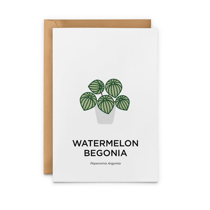 Watermelon Begonia Greeting Card