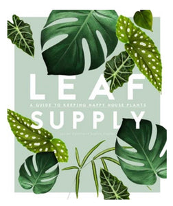 Leaf Supply: A guide to keeping happy house plants - Mandi at Home