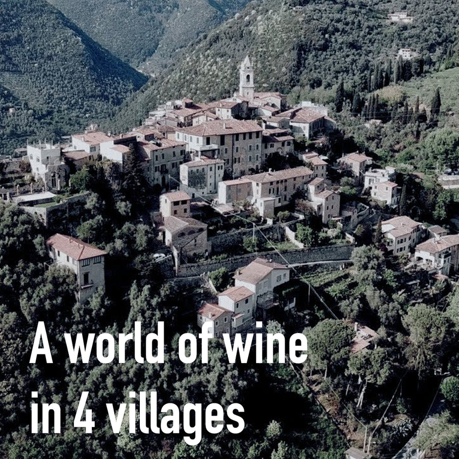 A World of Wine in 4 Villages: Part I: Camaiore (1/9)