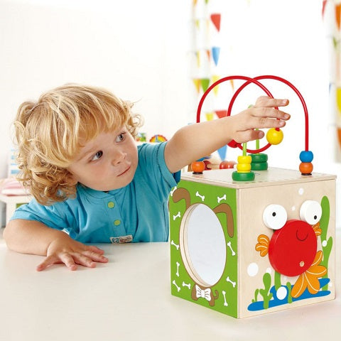 Hape Discovery Box Activity Center Baby Toy
