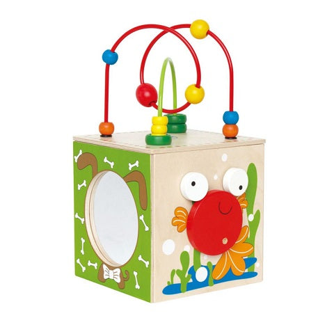Hape Discovery Box Activity Center
