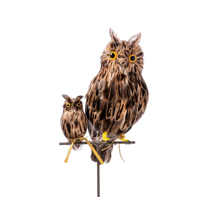 Artificial Bird - Small Brown Owl