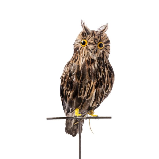 Artificial Bird - Large Brown Owl