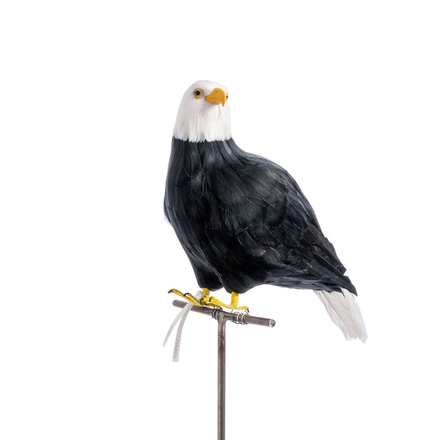 Artificial Bird - Large Eagle