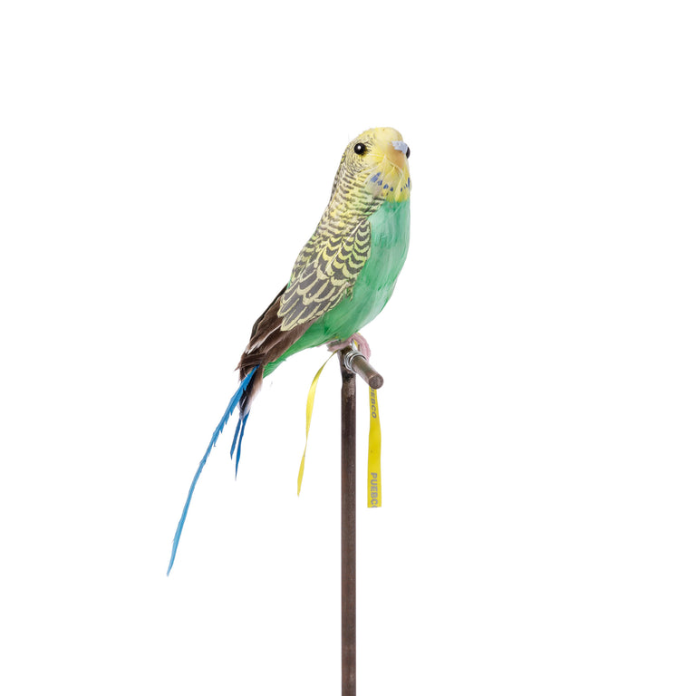 Artificial Bird - Green Budgie