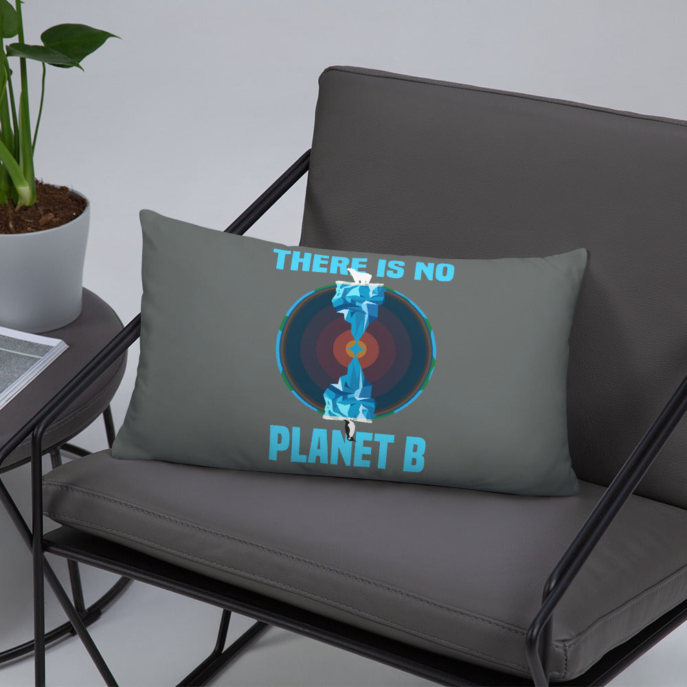 There is no planet B North and South - Basic Pillow