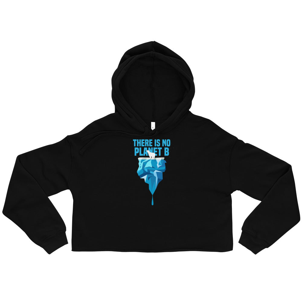There is no planet B North and South - Crop Hoodie