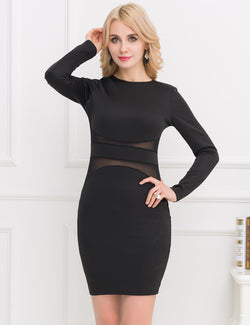 Round Neck Sexy Transparent Black Long Sleeve Bodycon Dress