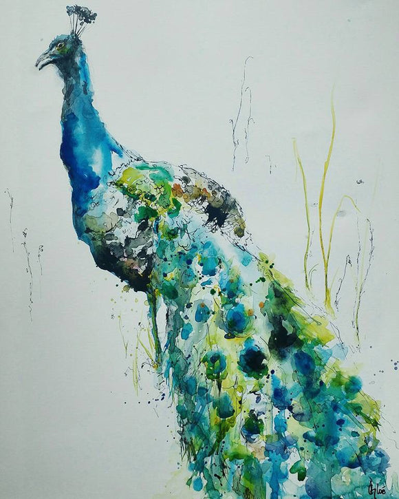 Mr Peacock •Sold•