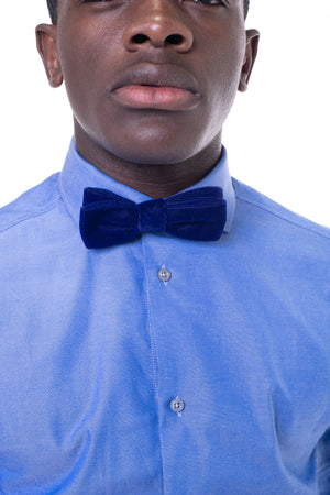 Royal Blue Velvet Bowtie