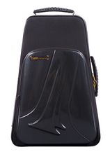 Load image into Gallery viewer, Bam New Trekking Double Trumpet Case