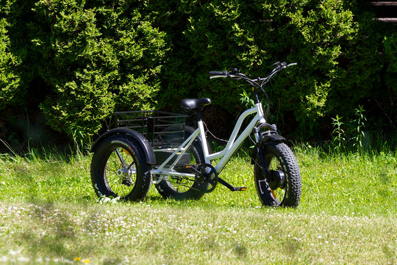 FAT TIRE 3 WHEEL EBIKE 36V 500W motor