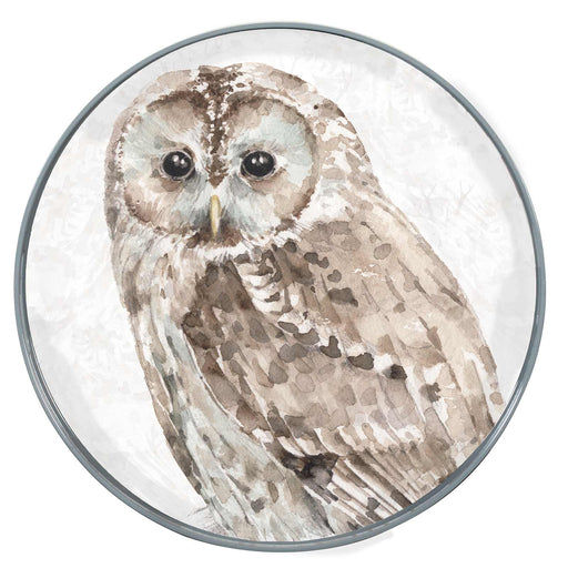 "Barred Owl 15"" Coco Tray"