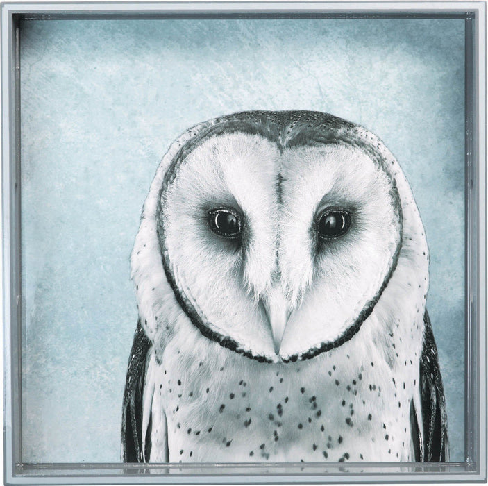 "Snowy Owl 15"" x 15"" Art Tray TRAY-SQUARE rfp-home"