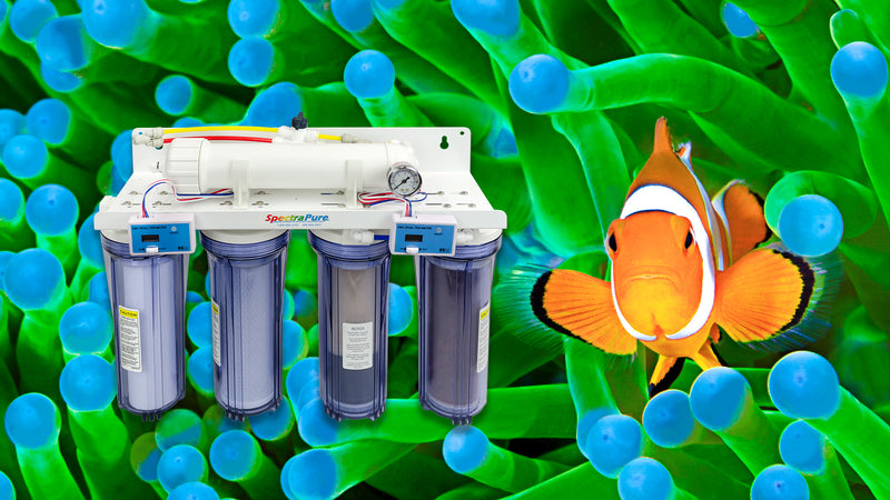 Explore SpectraPure's Aquarium Products