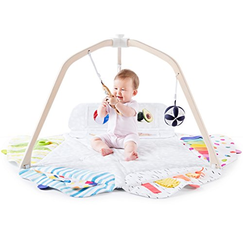The Play Gym by Lovevery; 5 Developmental Zones for Brain, Fine, Gross Motor & Sensory Development; Organic Teether, Wood Batting Ring, Mirrors; Grounded in Science - Educational Playtime w/a Purpose