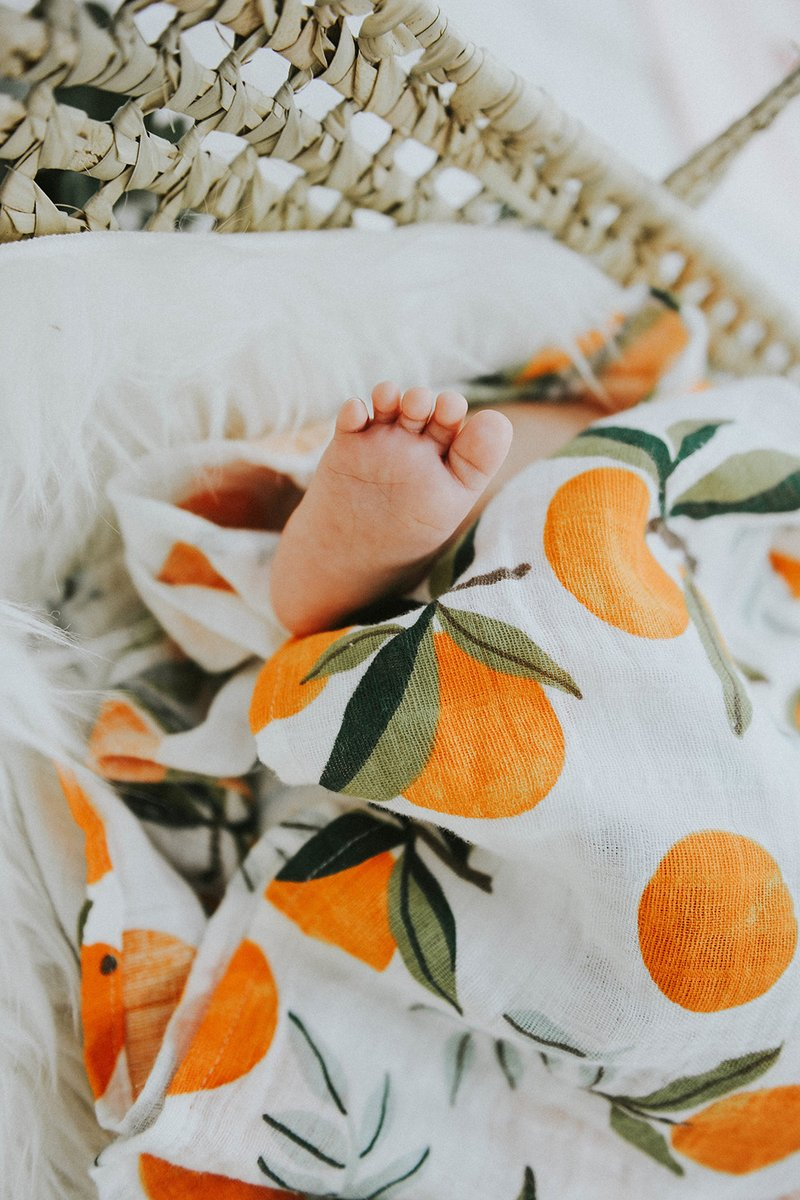 the Swaddle | Clementine