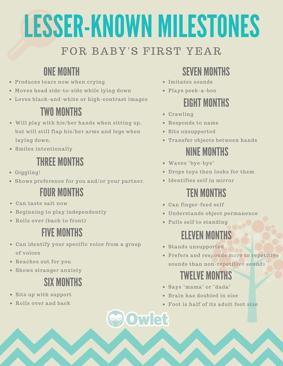 Everything You'll want to have handy for baby's first year