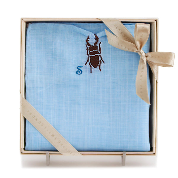 Stag beetle blue
