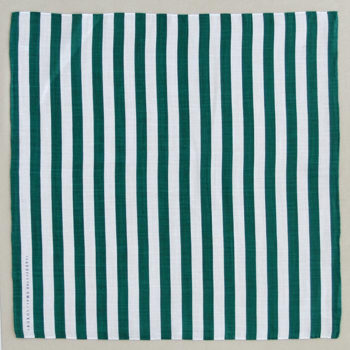 Stripe TypeC(green)
