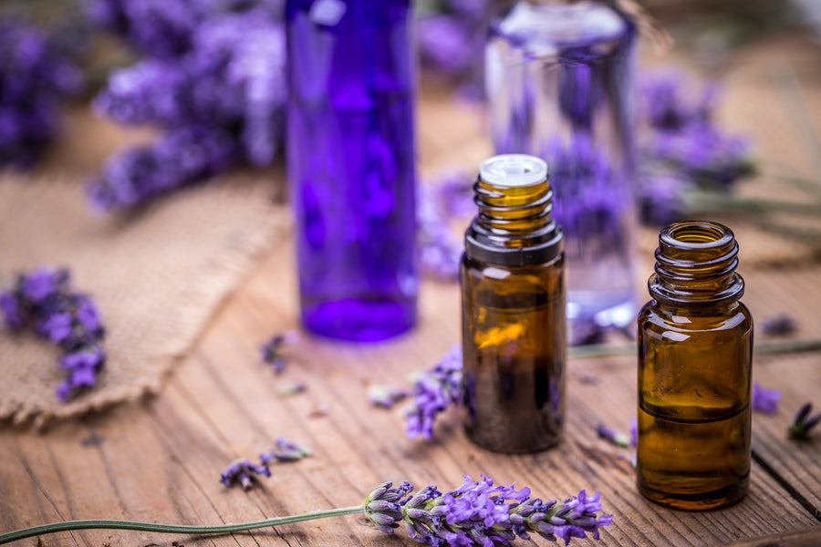 All You Need to Know About Essential Oils