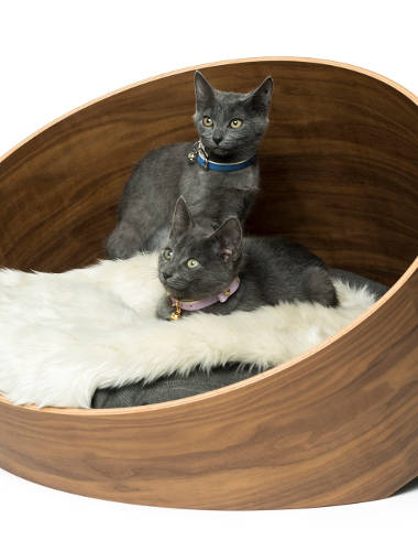 Land of Meow MiaCara Covo Cat Bed