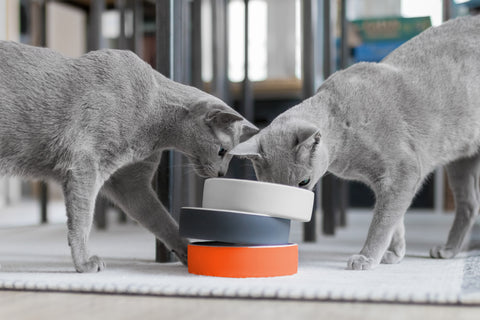 Land-of-Meow-Magisso-Heart-Bowl-Multiple-Colours