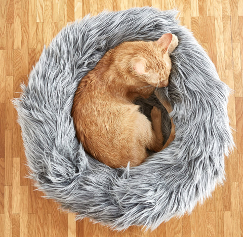 Land of Meow MiaCara Capello Cat Bed with Cat