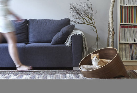 Land of Meow MiaCara Covo Cat Cave Walnut/Taupe with Cat