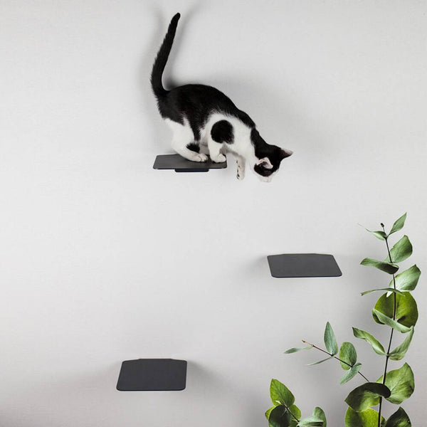 Steps Cat Wall Stairs - Black